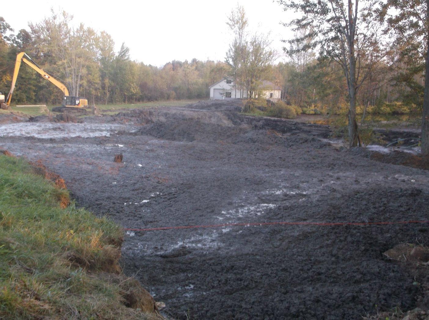 Grand Blanc, Michigan New swamp pond Michigan (124)