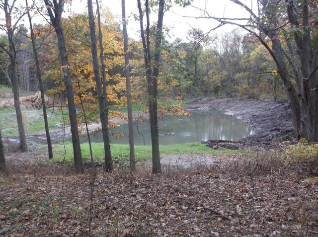Grand Rapids, Michigan Pond too shallow (5).jpg
