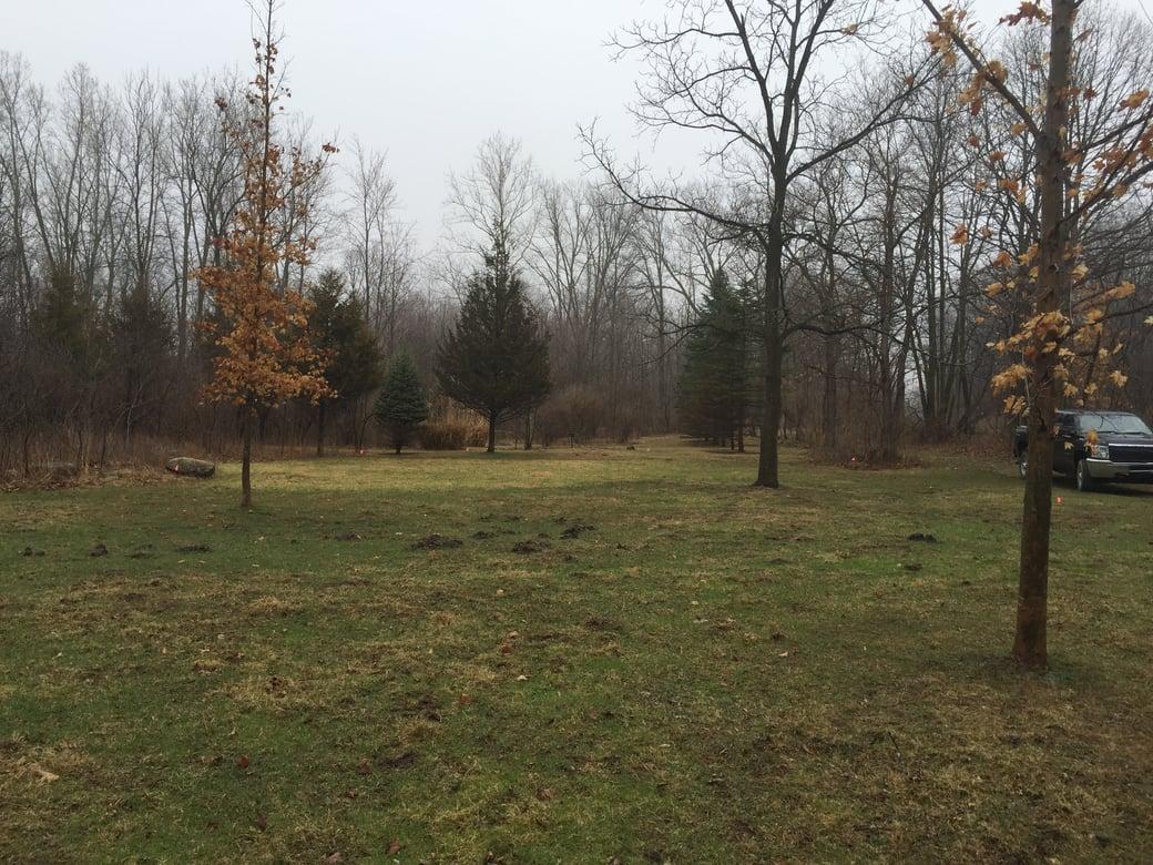 Hillsdale, Michigan Back Yard pond Michigan  (5)