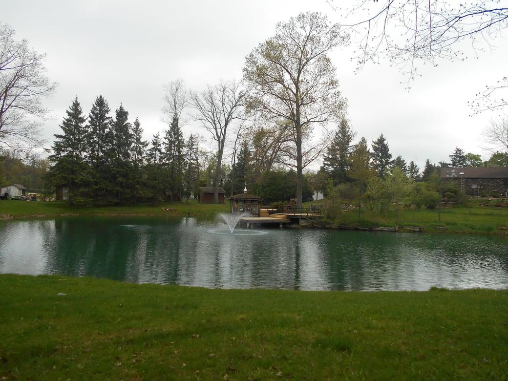 Holly, Michigan Michigan pond care (35)
