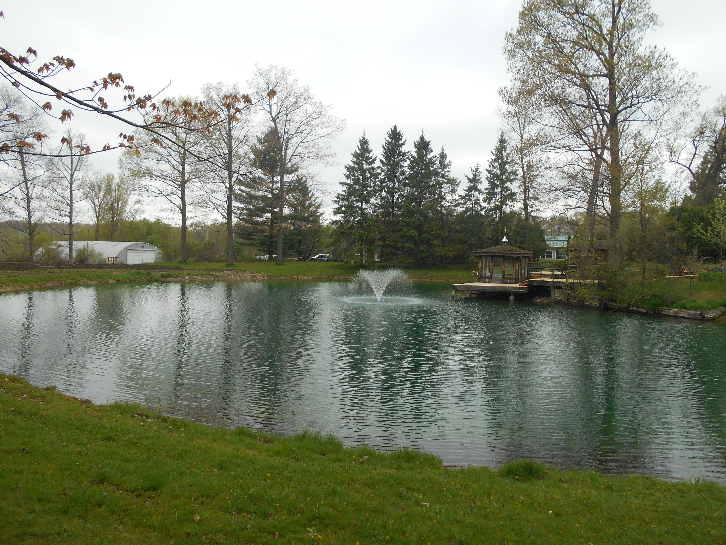 Holly, Michigan Michigan pond care (37)