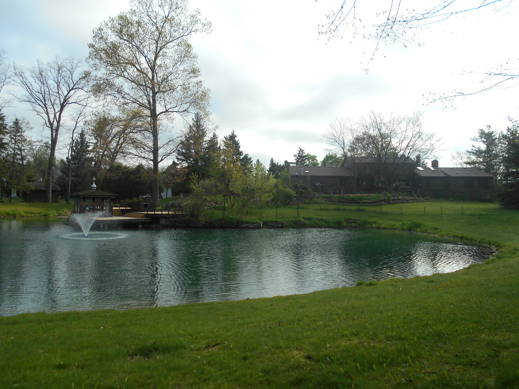 Holly, Michigan Michigan pond care (55)