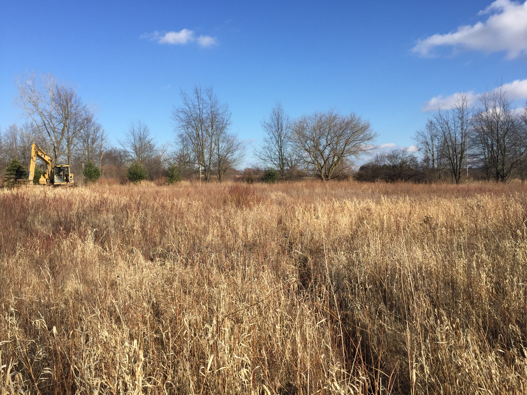 Howell, Michigan Michigan pond (79)