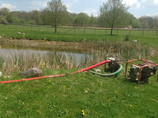 Pond_deepened_Howell_Michigan_58.jpg