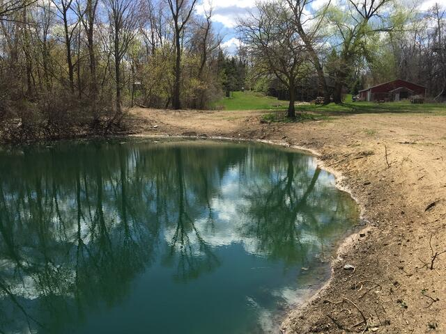 Pond_silted_in_dug_out_Metamora_Michigan_23.jpg