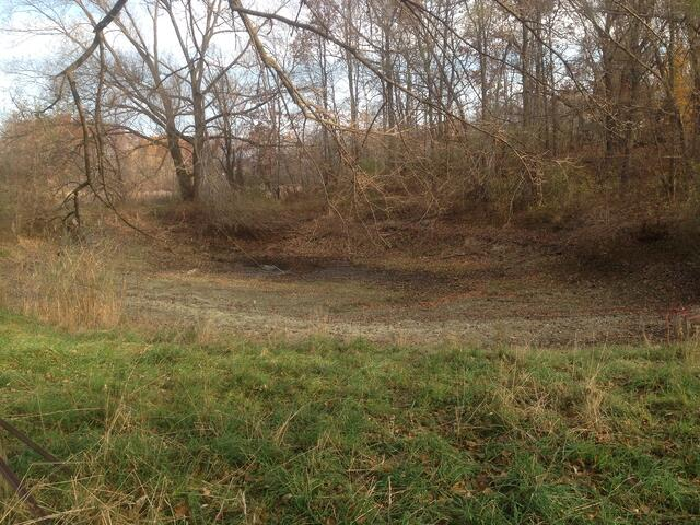 Pond_silted_in_dug_out_Metamora_Michigan_7.jpg