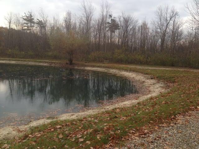 Rocks_around_pond_fix_pond_banks_Metamora_MI_3.jpg