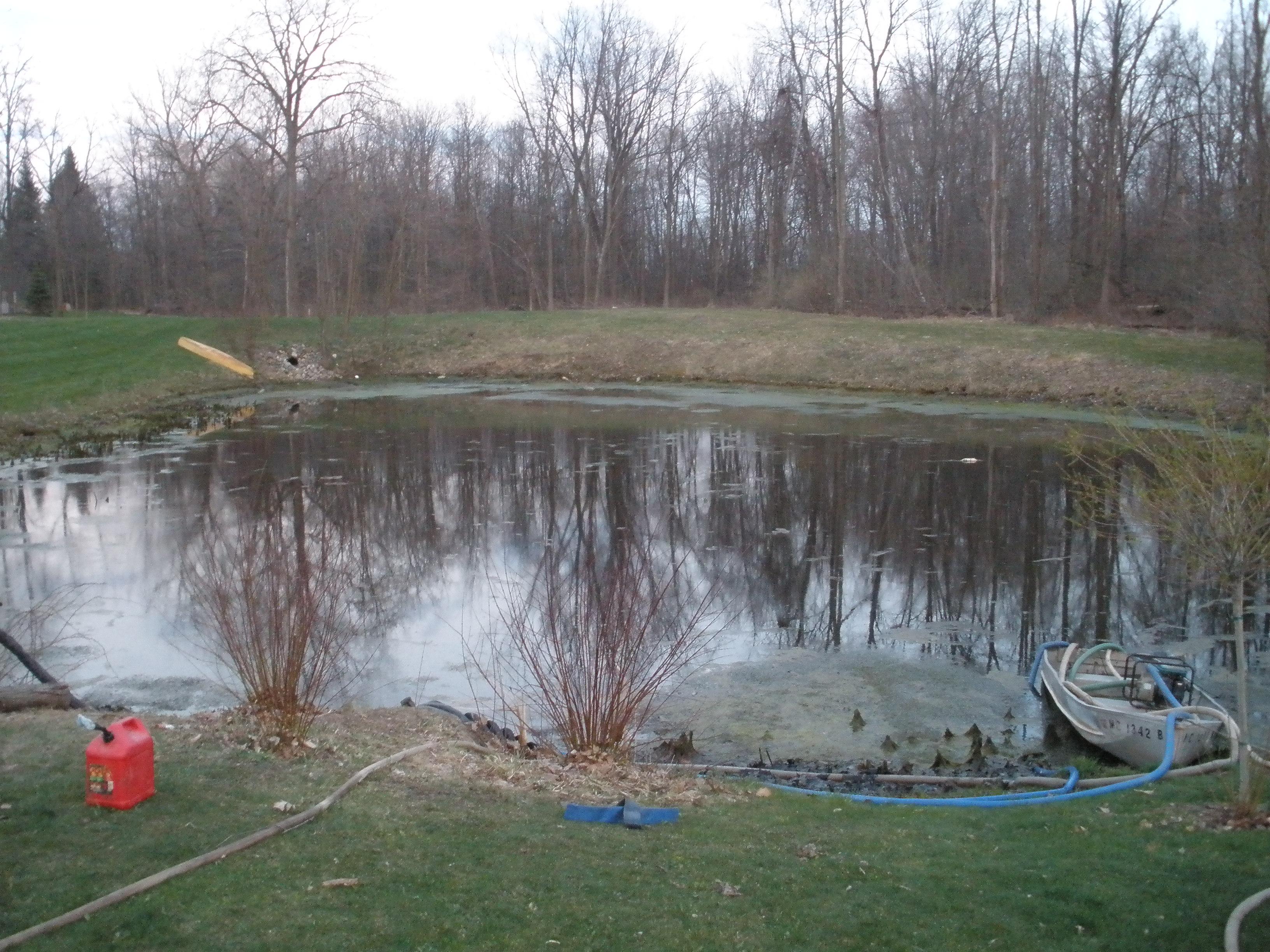 loon sub pond + 144.jpg
