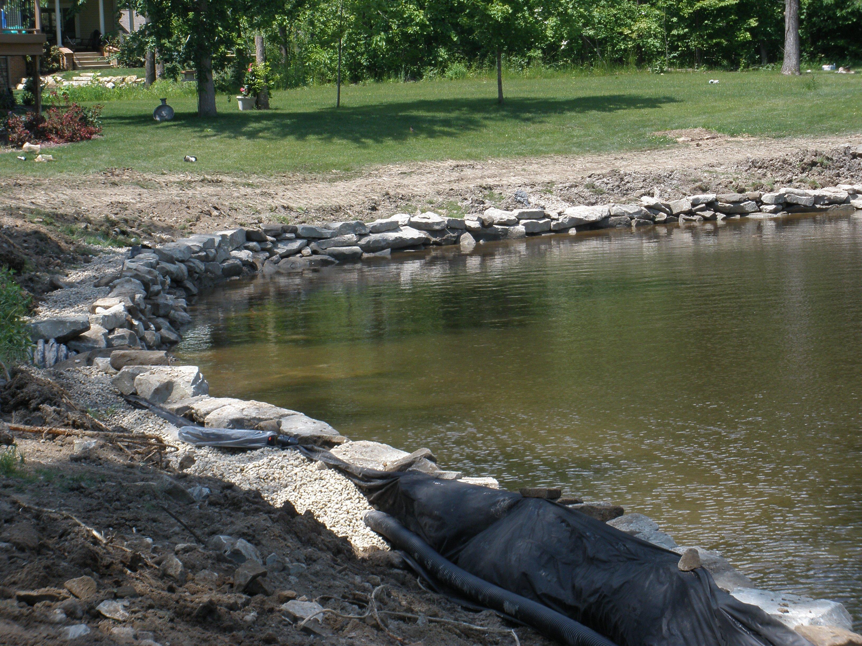 loon sub pond + 193.jpg