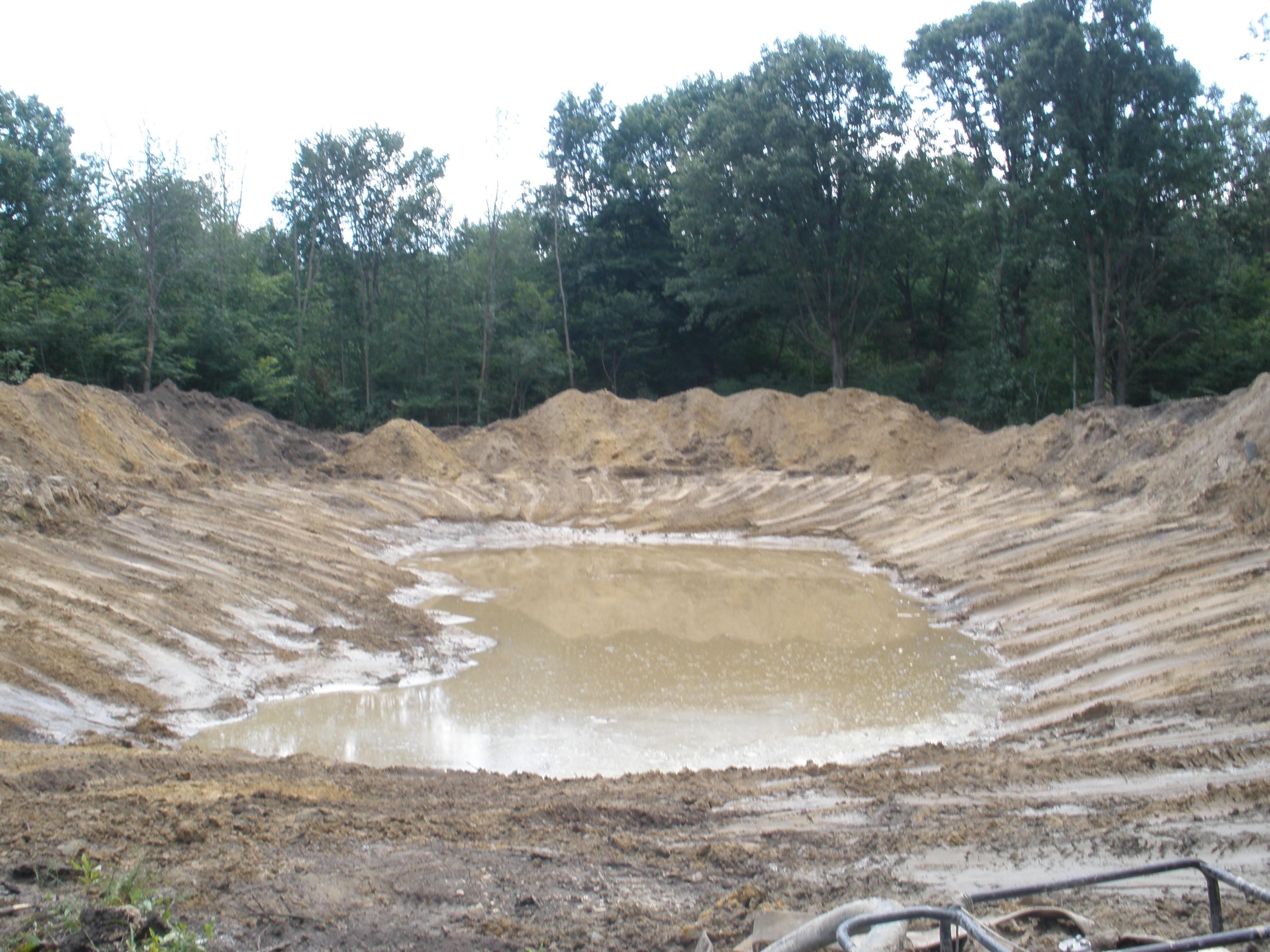 ponds 117.jpg