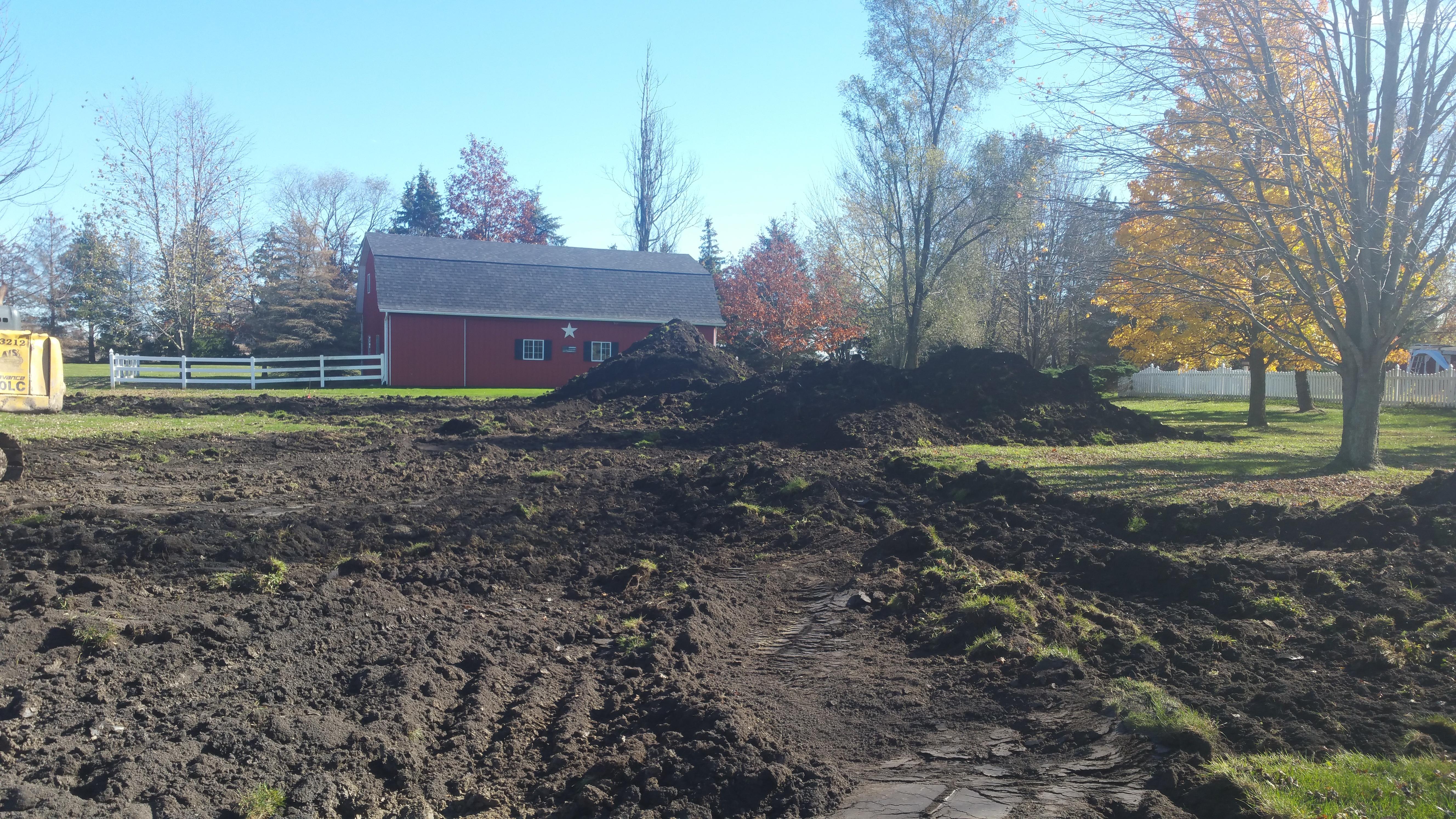 Britton, MI new pond (151).jpg