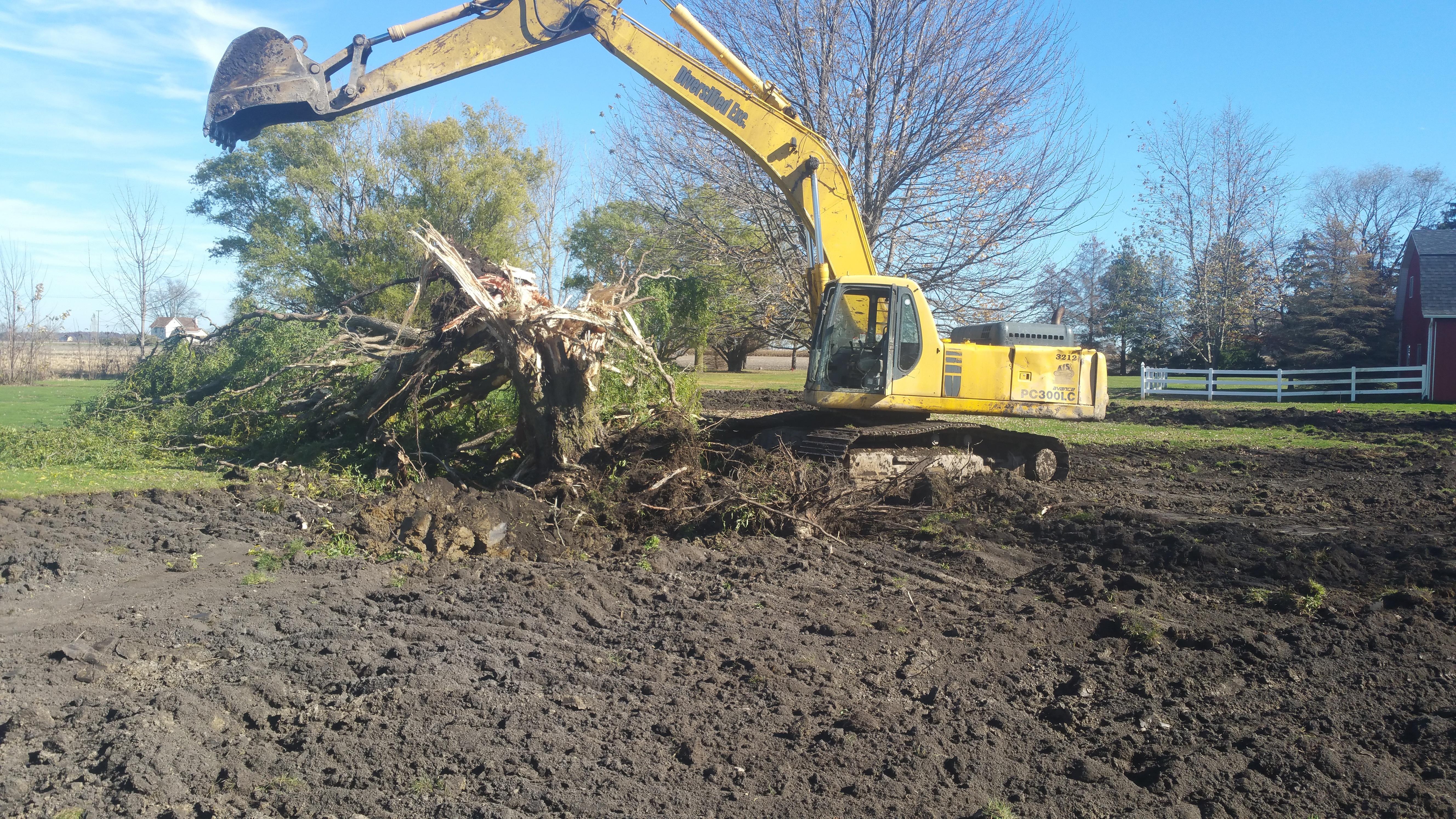 Britton, MI new pond (152).jpg