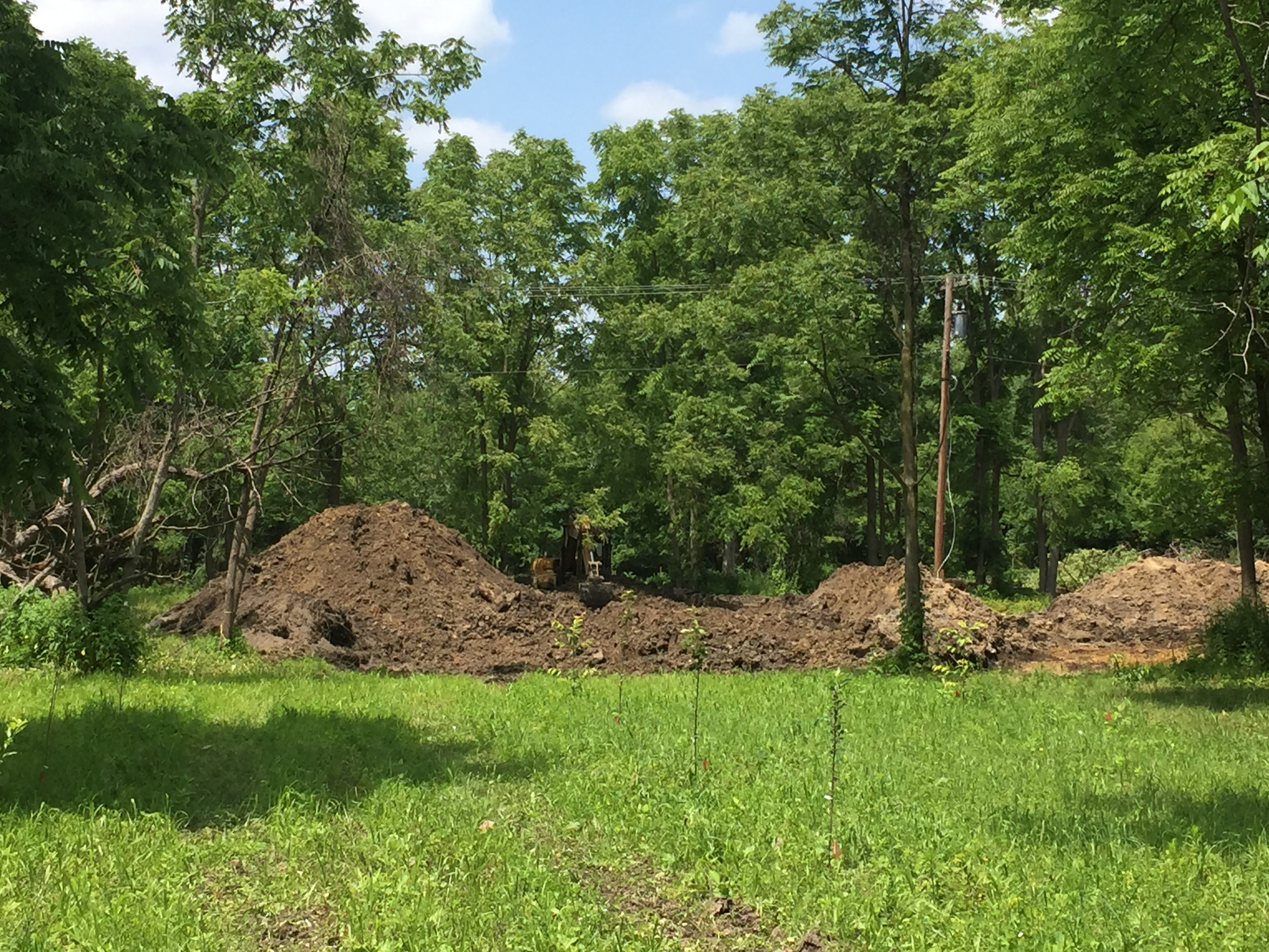 Brownstown, New pond dig (7).jpg