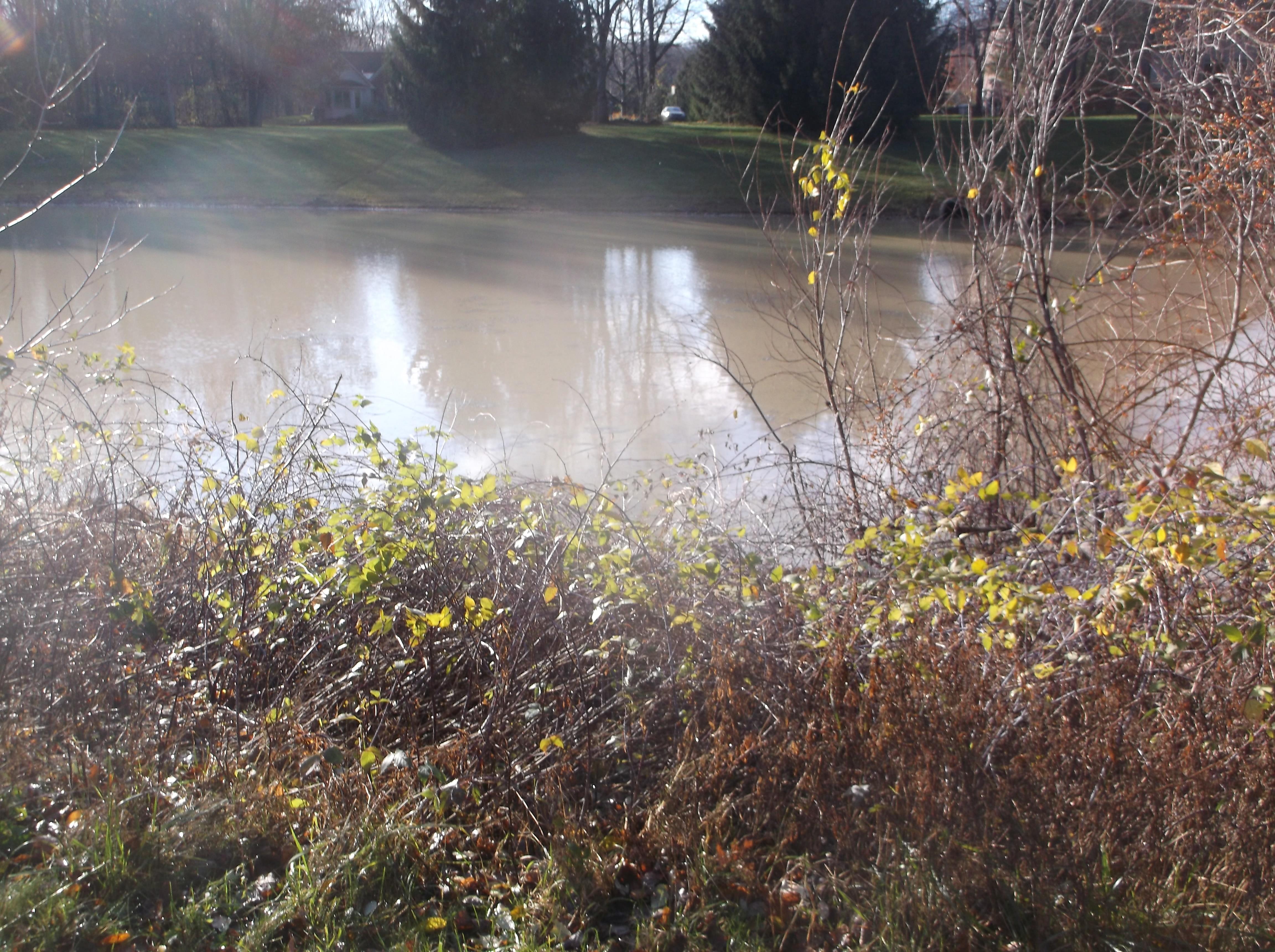Dave HOA pond berm leak fix (1).jpg