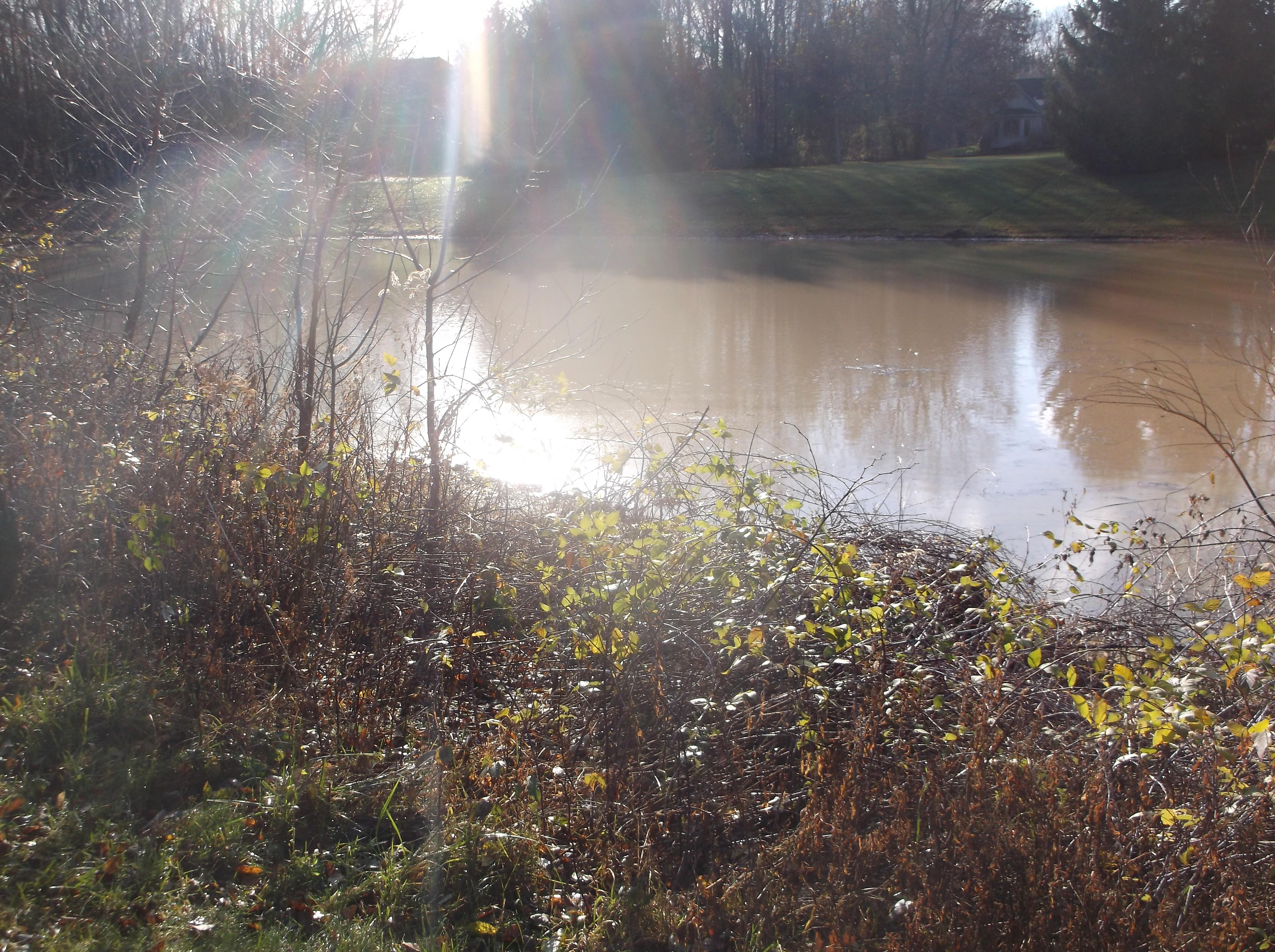 Dave HOA pond berm leak fix (3)-1.jpg