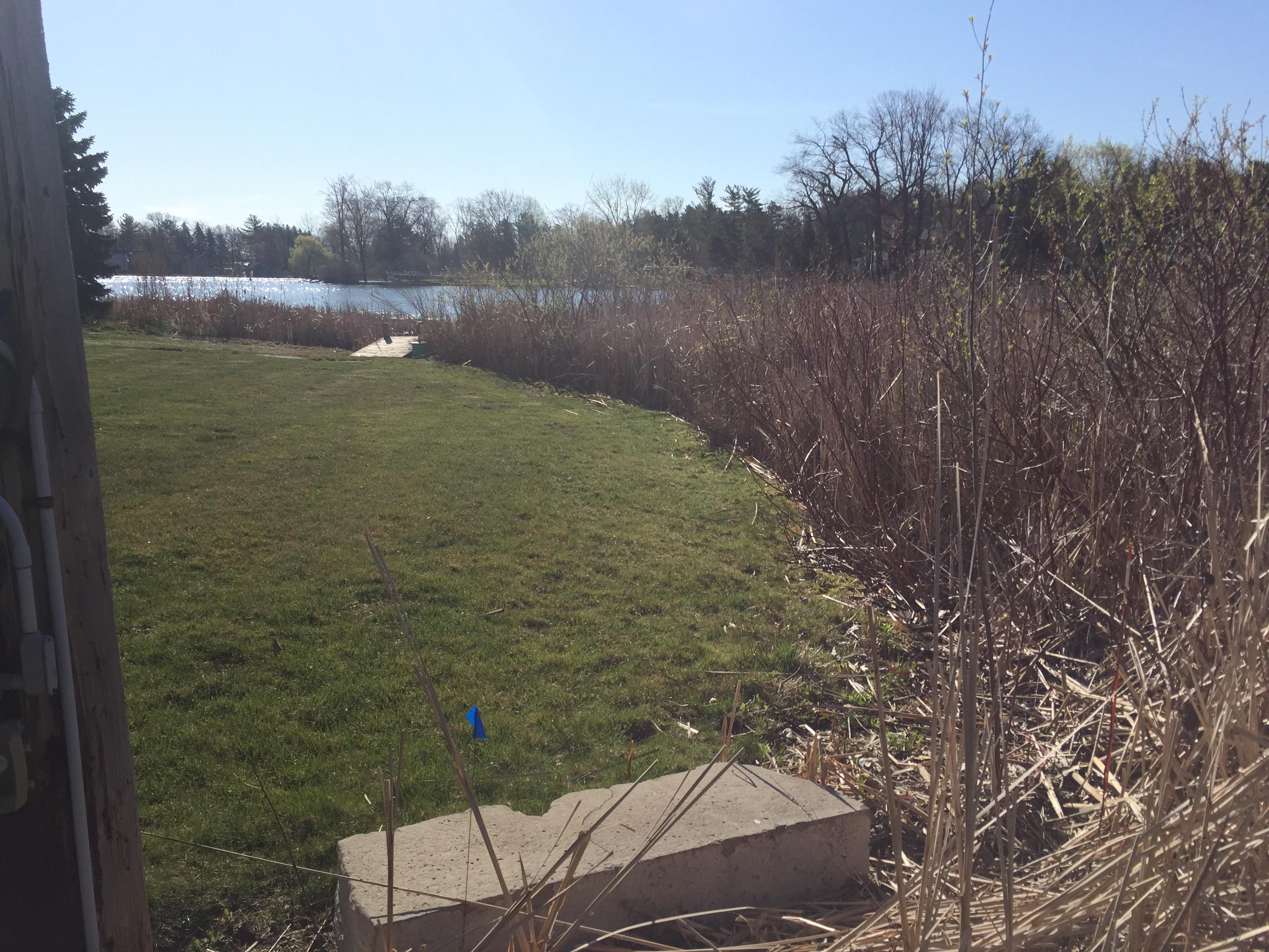 Fenton, Michigan lake front dredge  (89).jpg