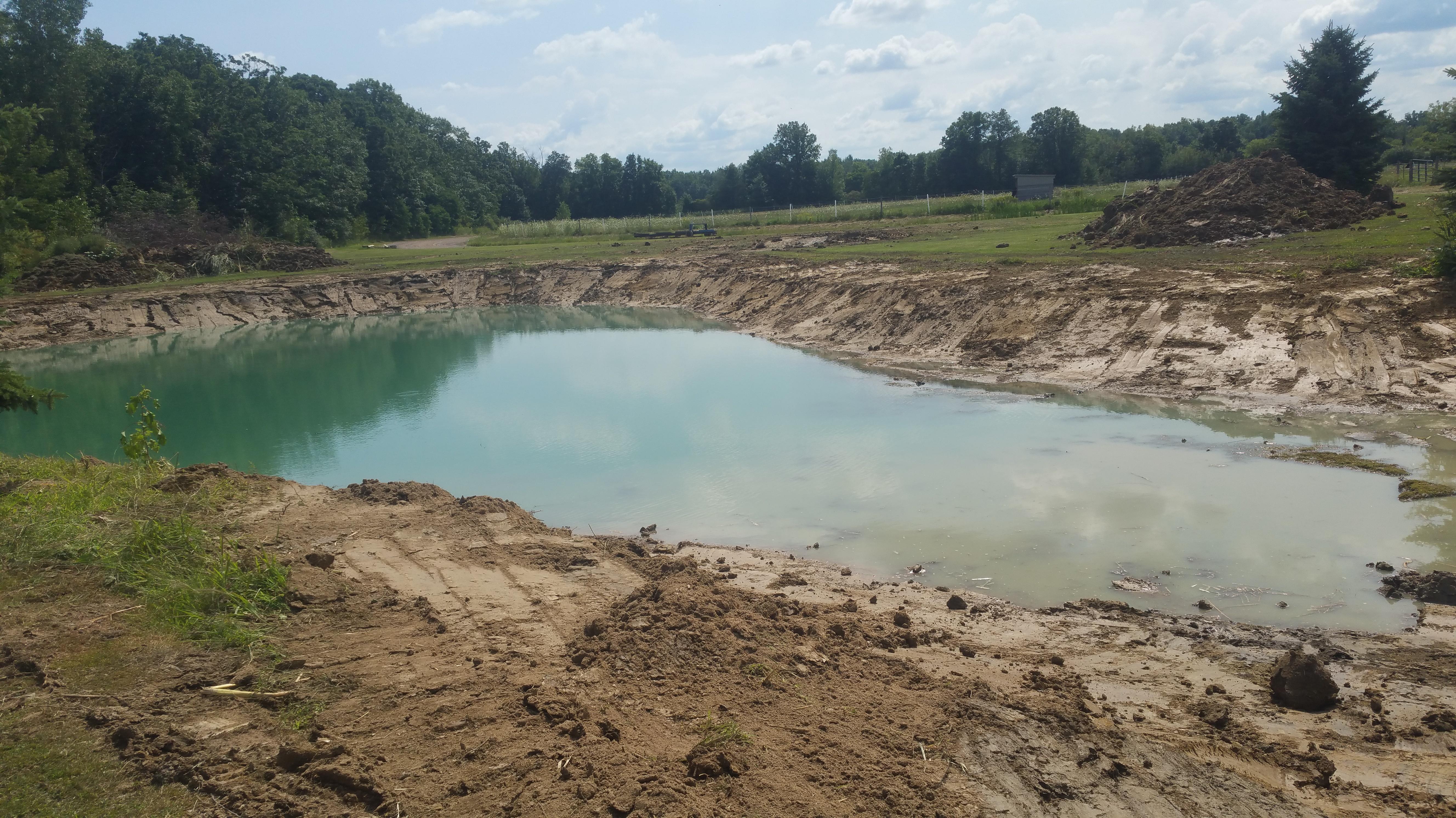 Flushing, Michigan Improve pond Michigan  (26).jpg