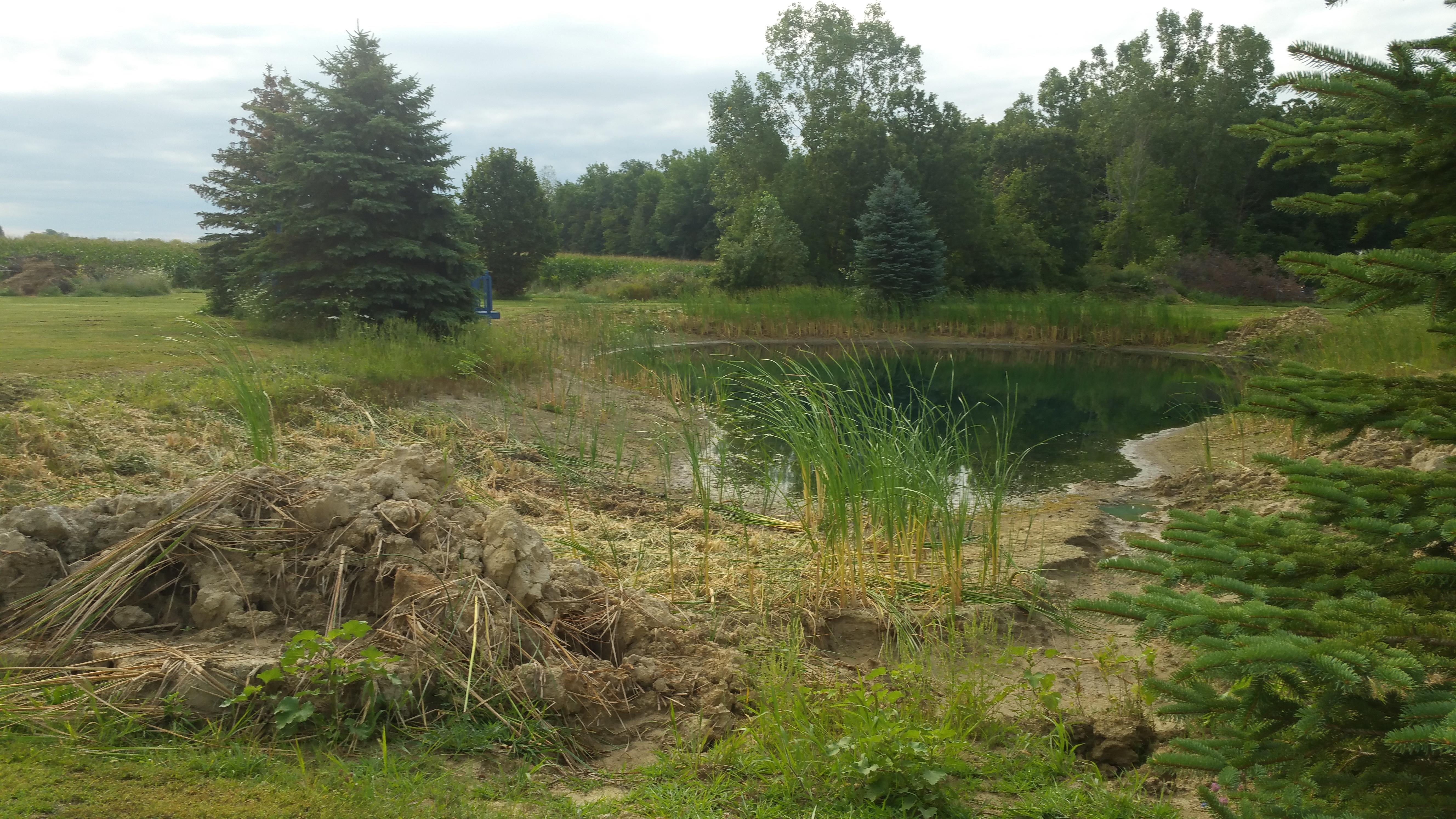 Flushing, Michigan Improve pond Michigan  (6).jpg