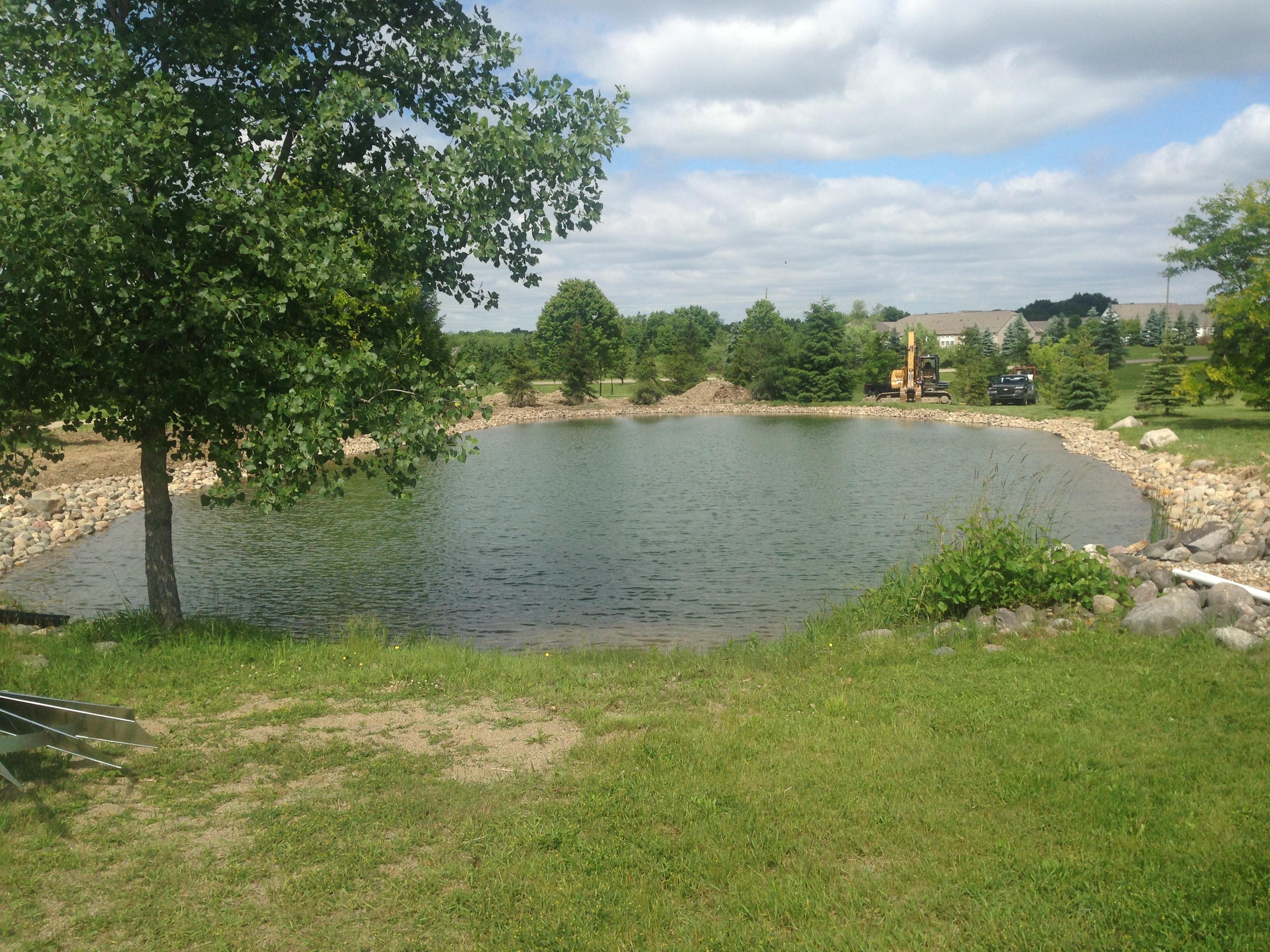 Pond_deepened_Howell_Michigan_13.jpg