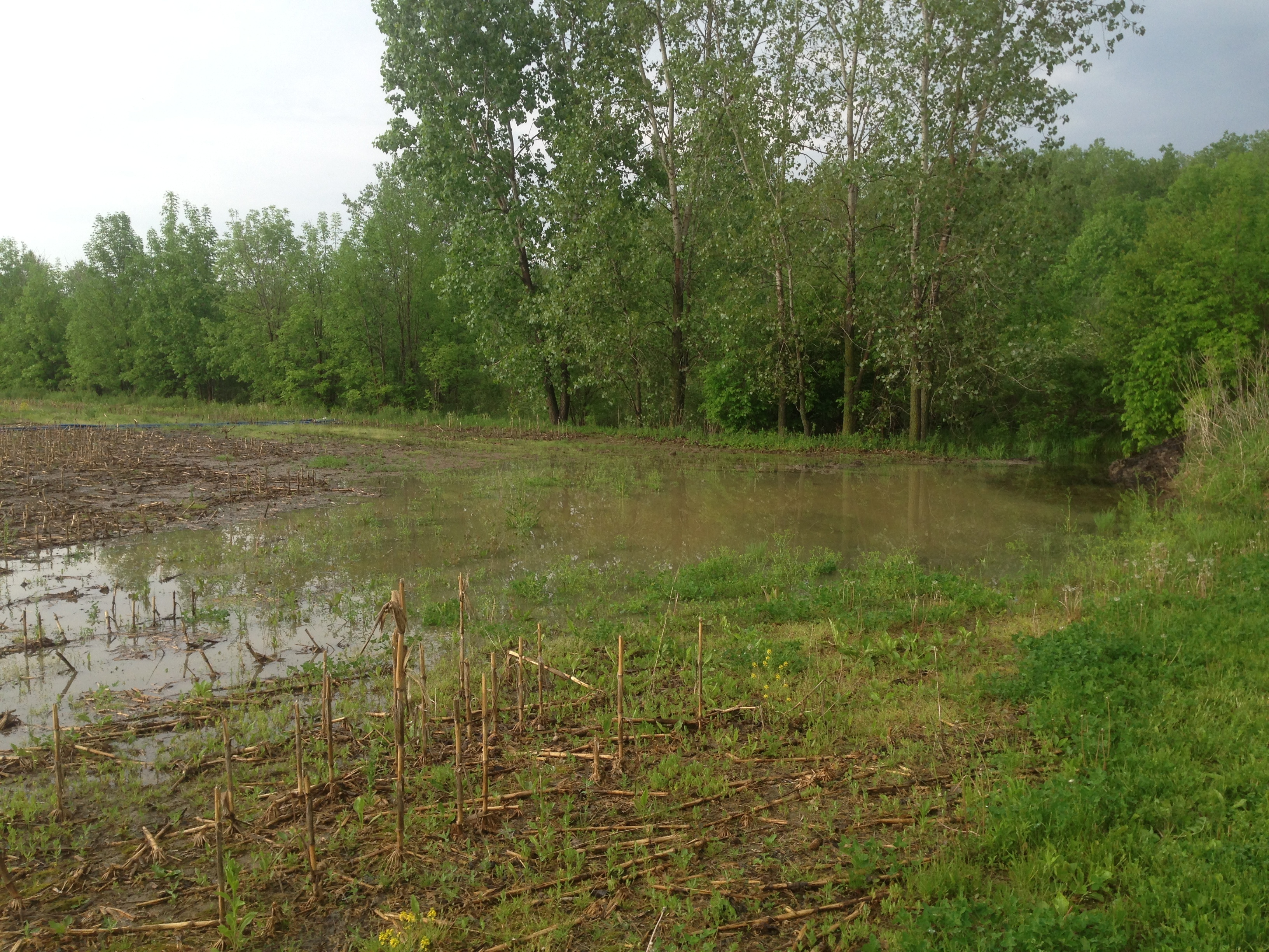 Pond_over_flow_pipe_repair__Michigan_Ray_Township_10.jpg