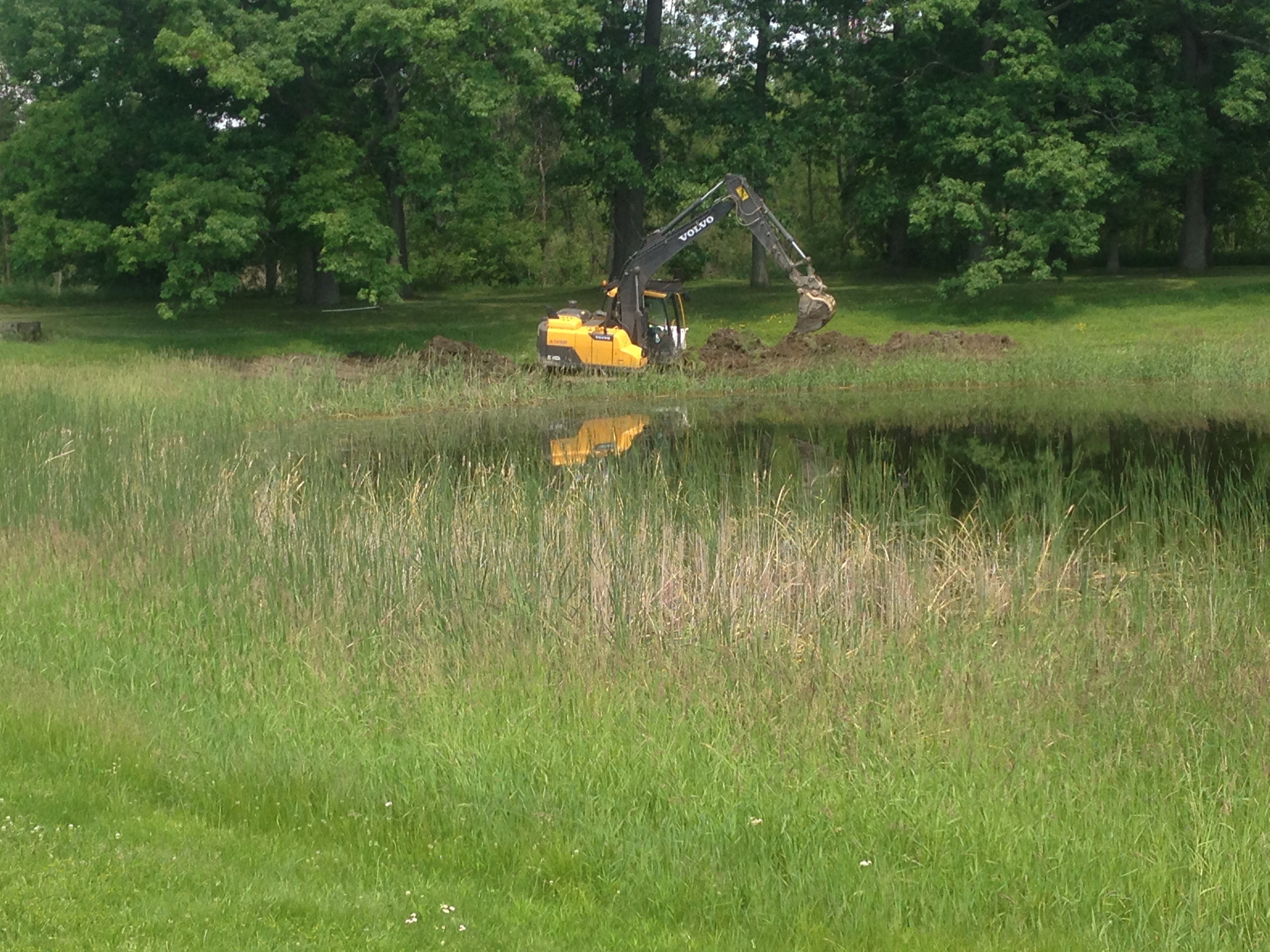 Pond_repair_Michigan_8.jpg