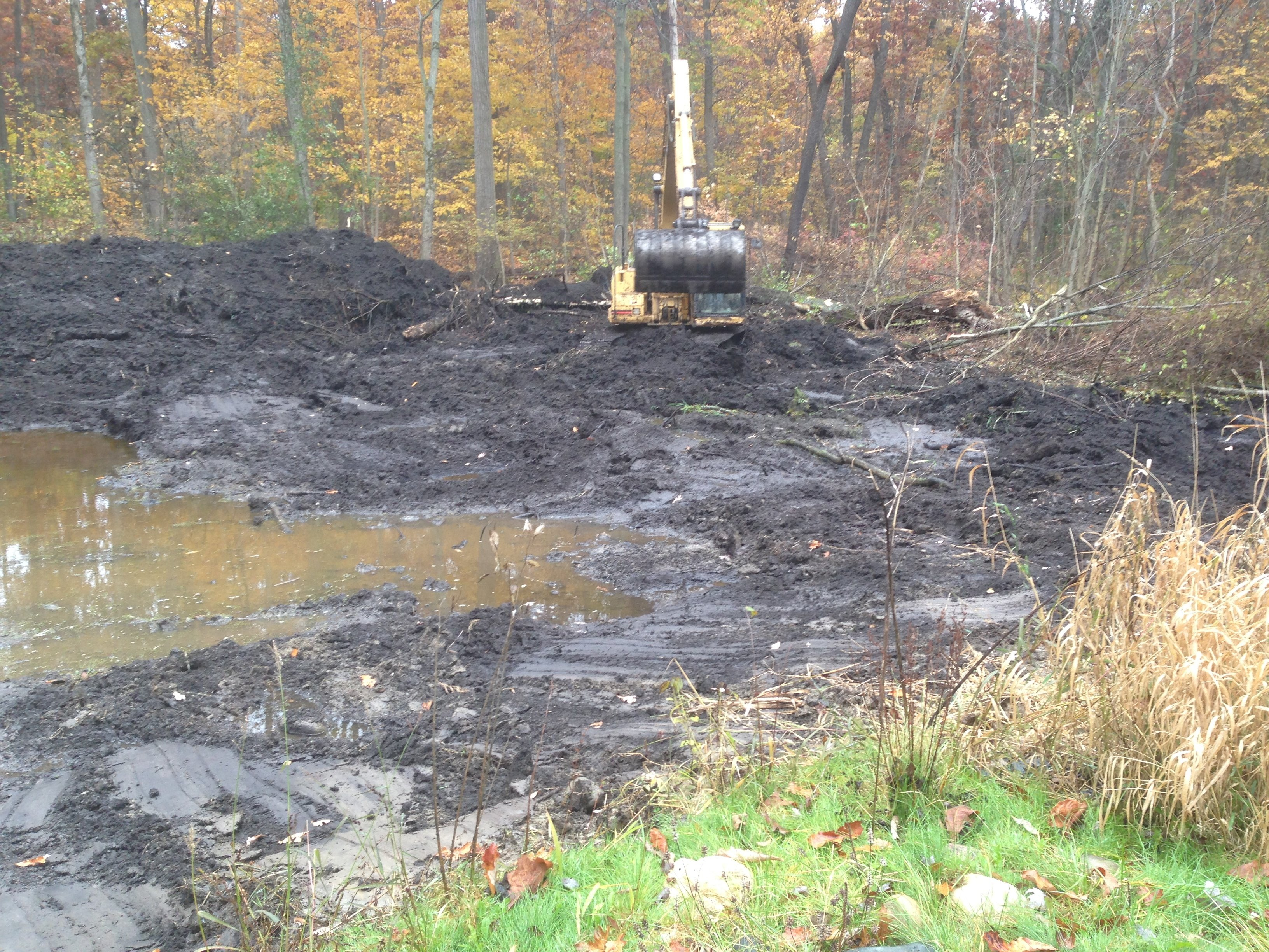 Pond_restoration_Novi_Michigan__18.jpg
