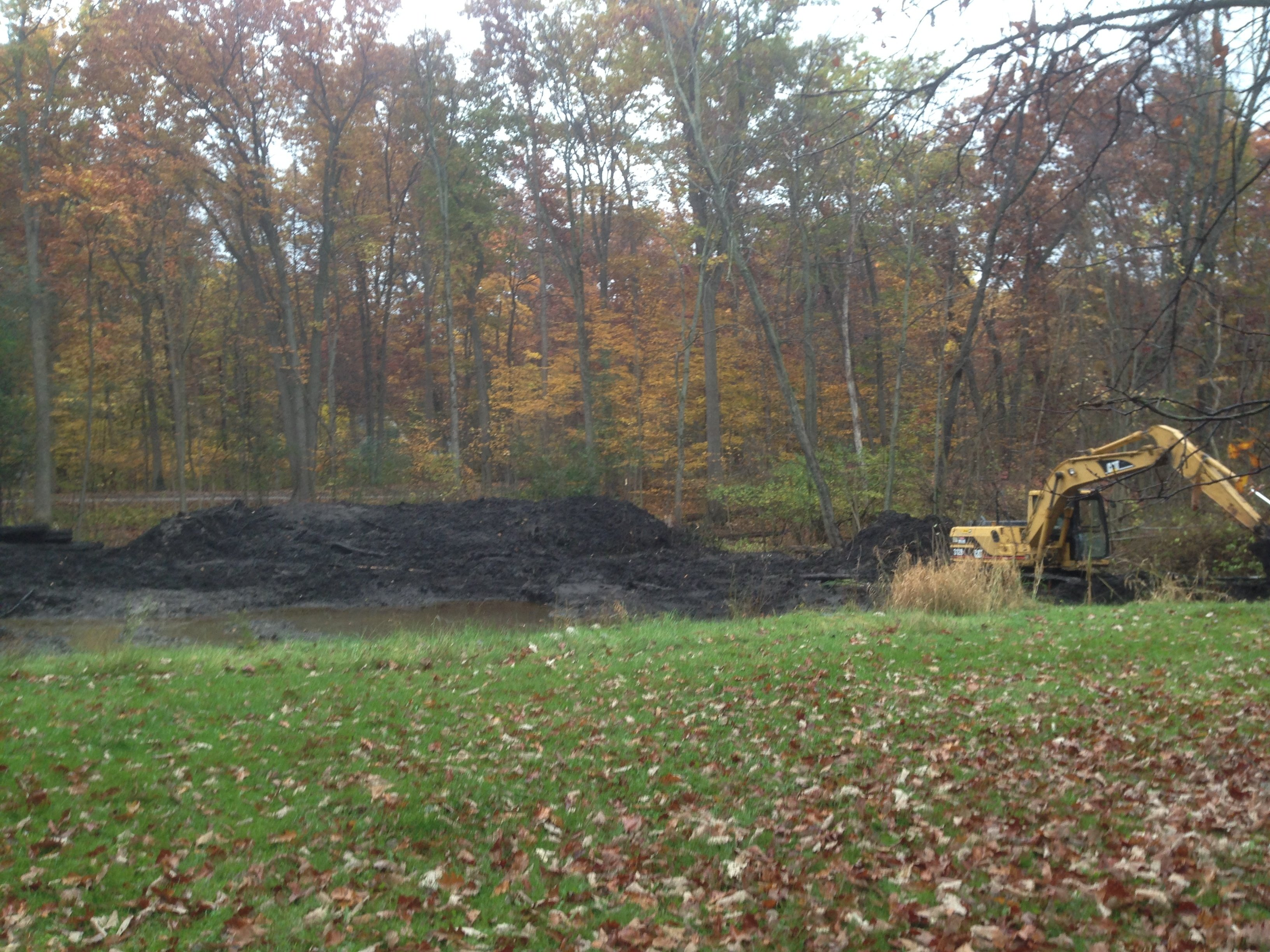 Pond_restoration_Novi_Michigan__20.jpg