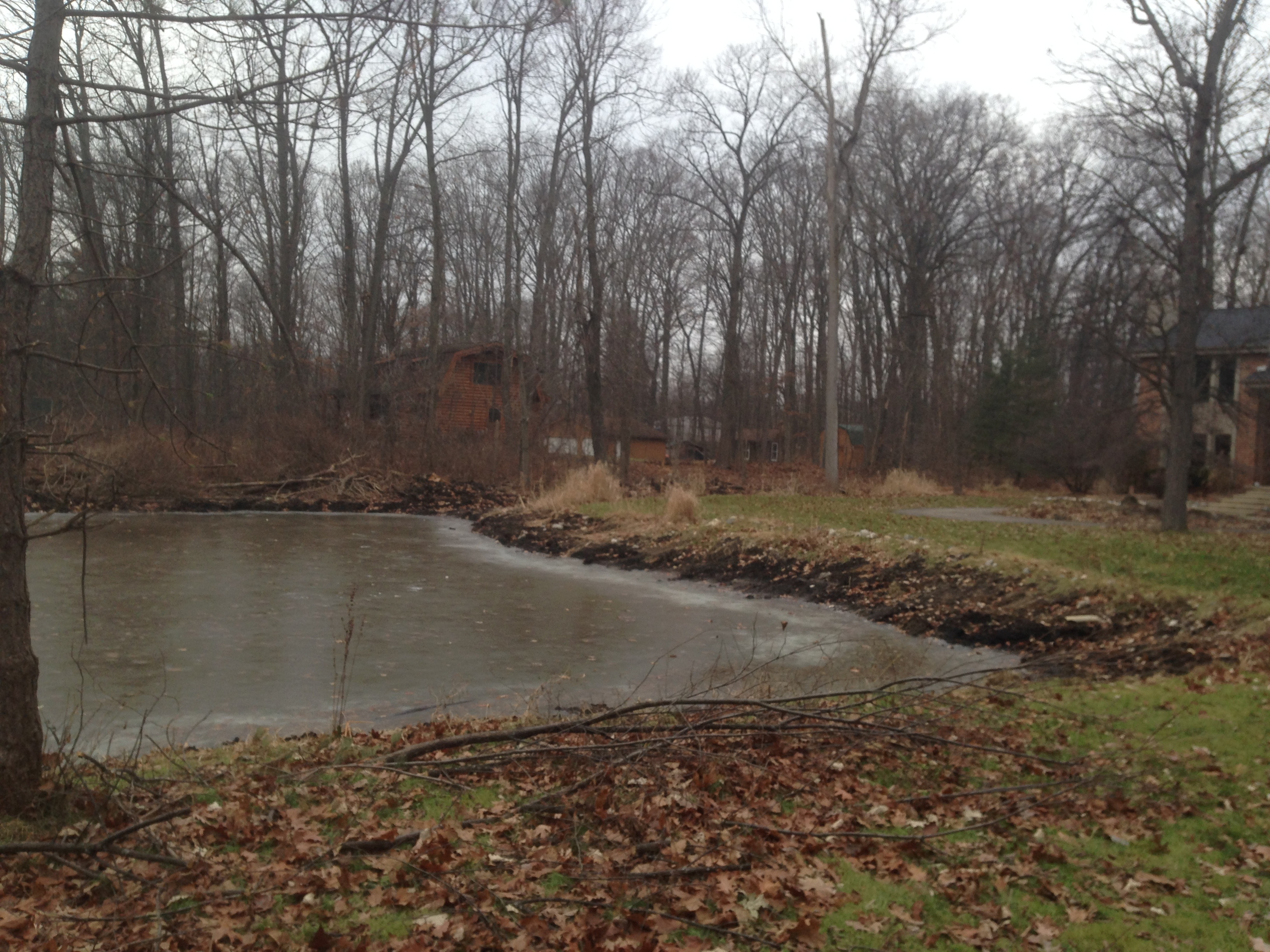 Pond_restoration_Novi_Michigan__37.jpg