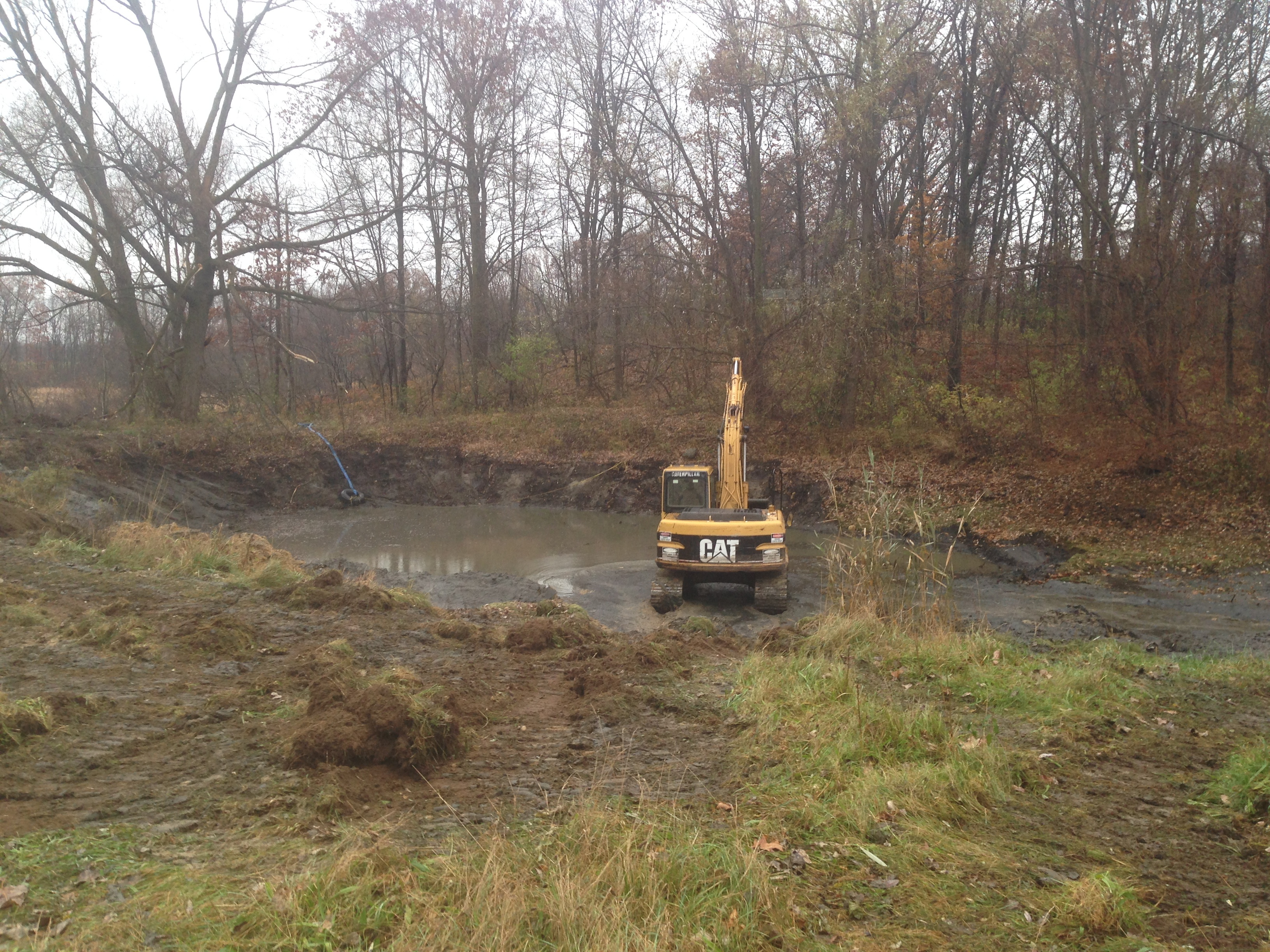 Pond_silted_in_dug_out_Metamora_Michigan_12.jpg