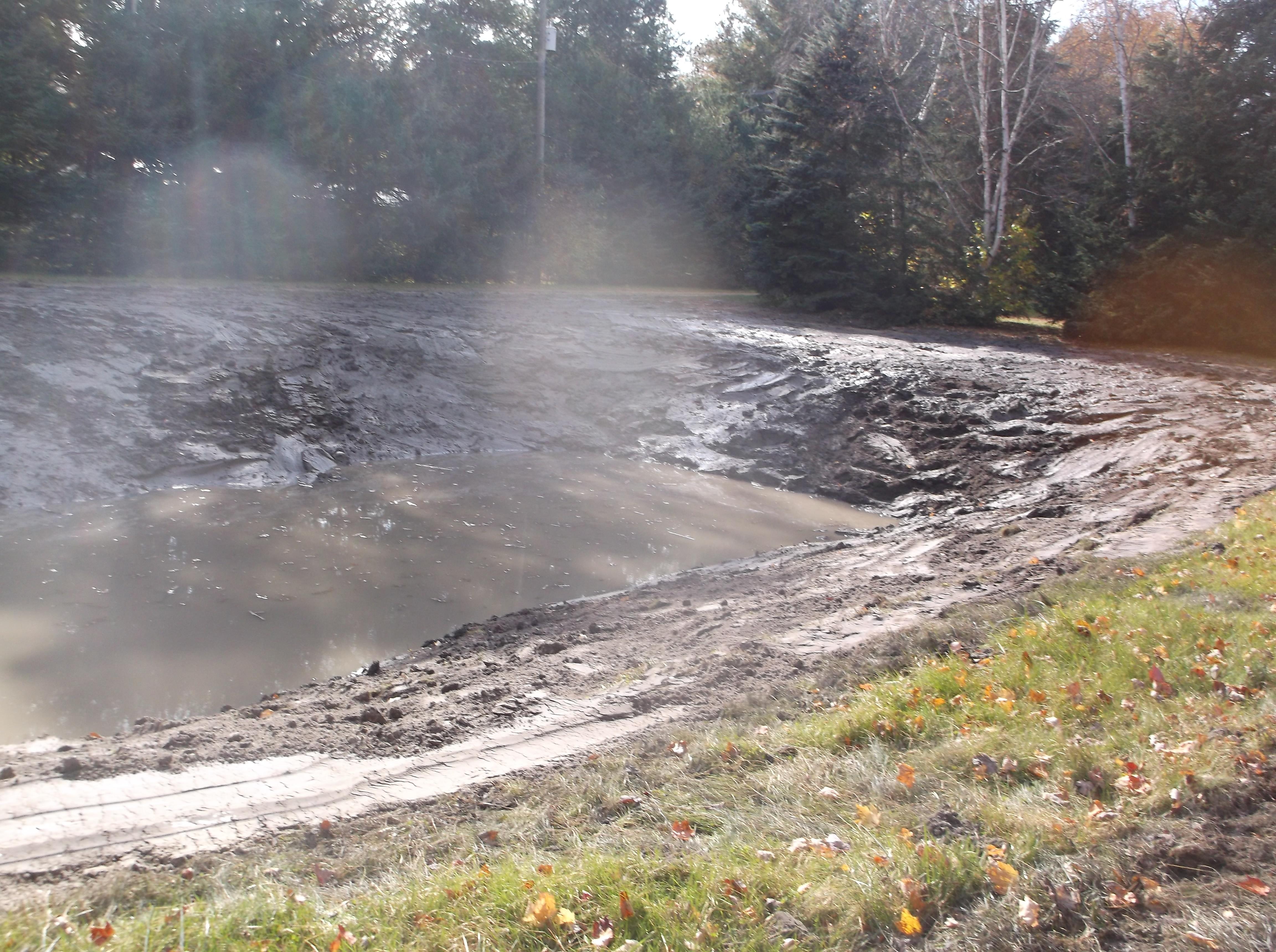 Rochester, Mi reduce size of pond  (12).jpg