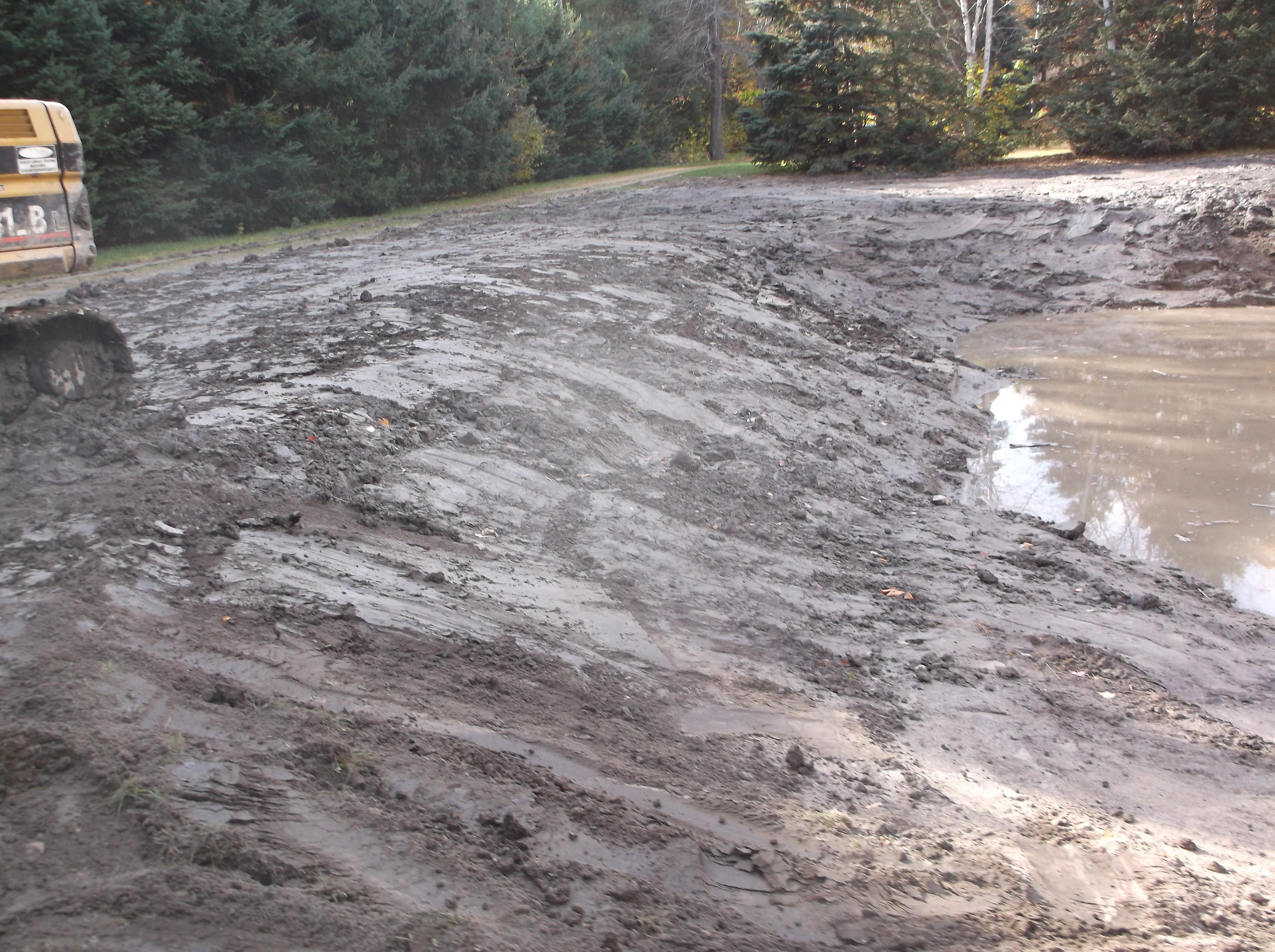 Rochester, Mi reduce size of pond  (9).jpg