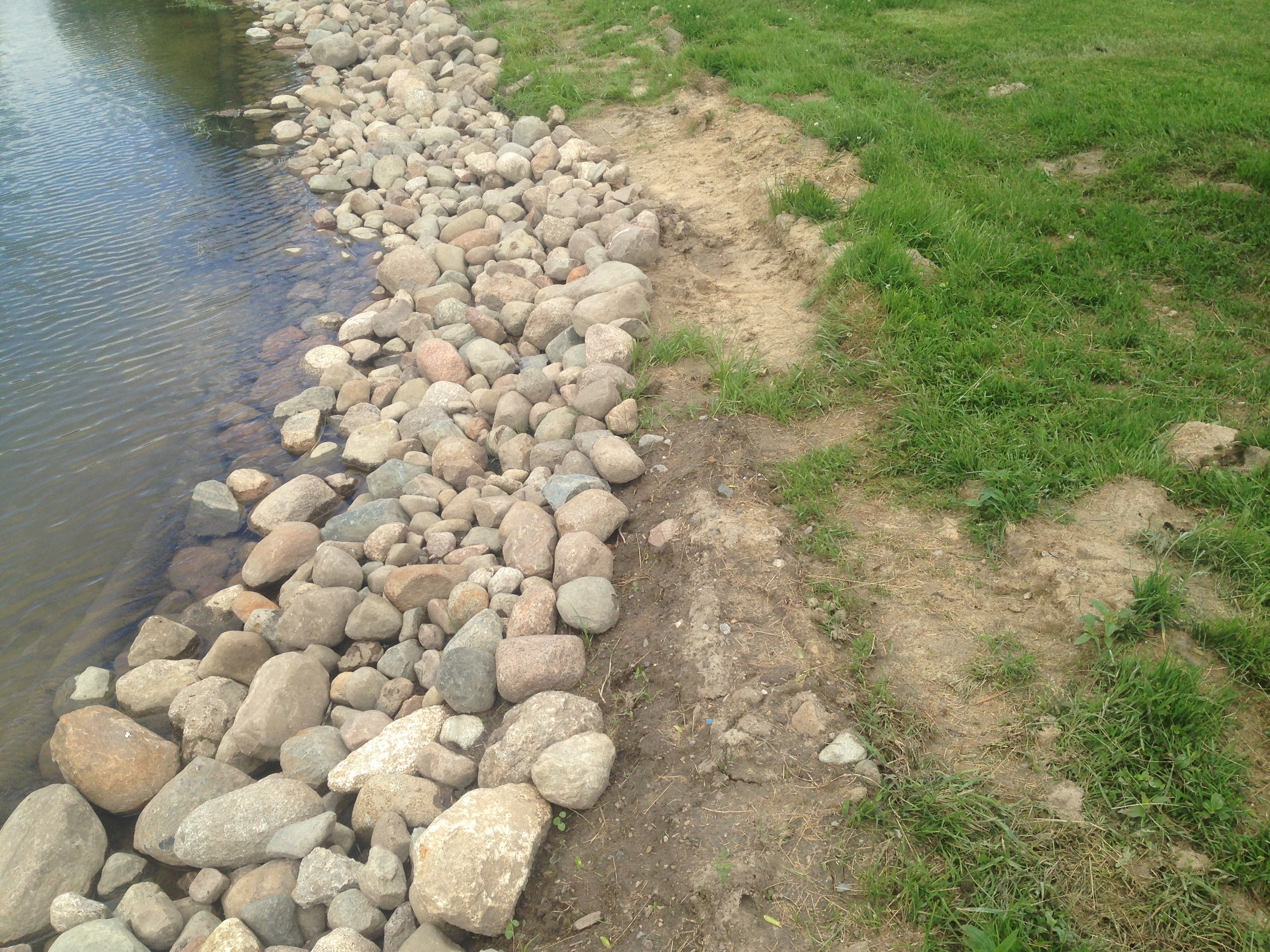_Backyard_pond_bank_stabilization_Michigan_Howell_2.jpg