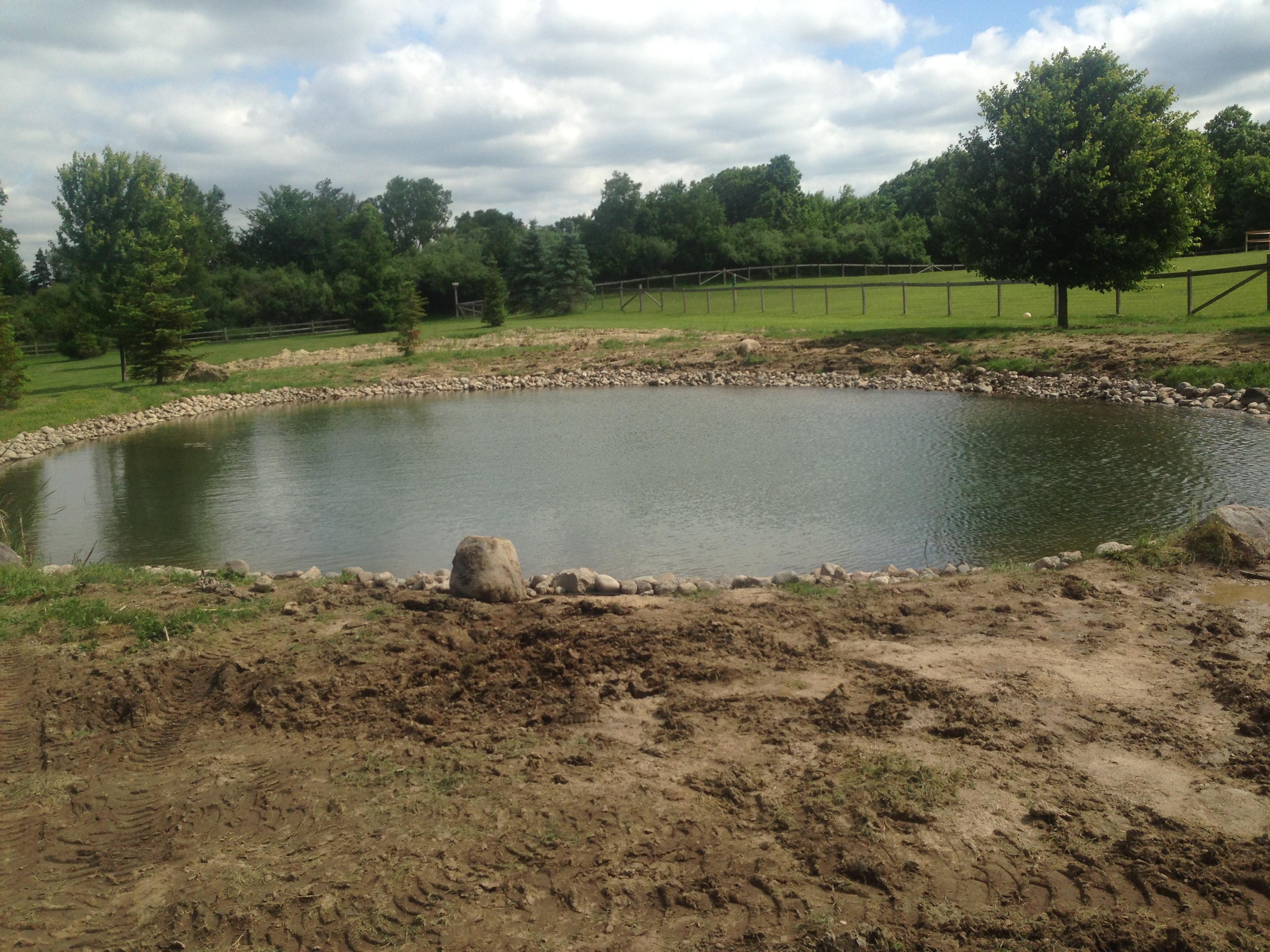 _Backyard_pond_bank_stabilization_Michigan_Howell_3.jpg