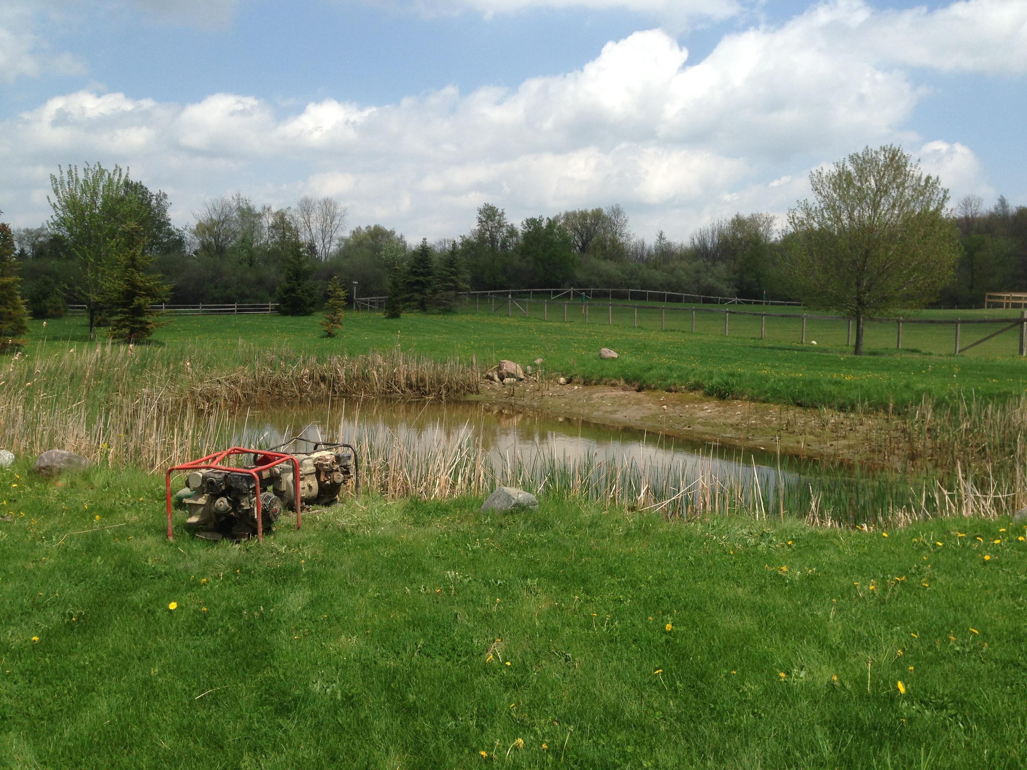 _Backyard_pond_bank_stabilization_Michigan_Howell_6.jpg